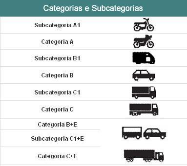 Tipos de cartas de condução